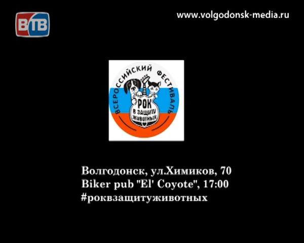В Волгодонске состоится благотворительный фестиваль «Рок в защиту животных»