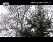 Пасмурно и ветрено: о погоде в Волгодонске на предстоящие выходные