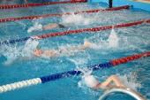 В первом детском турнире по плаванию «Я – пловец!» приняли участие 210 юных спортсменов