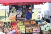За три дня на фестивале «Дары осени» было продано 65 тонн сельскохозяйственной продукции