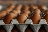 В Ростовской области выросли цены на гречневую крупу, куриные яйца, репчатый лук