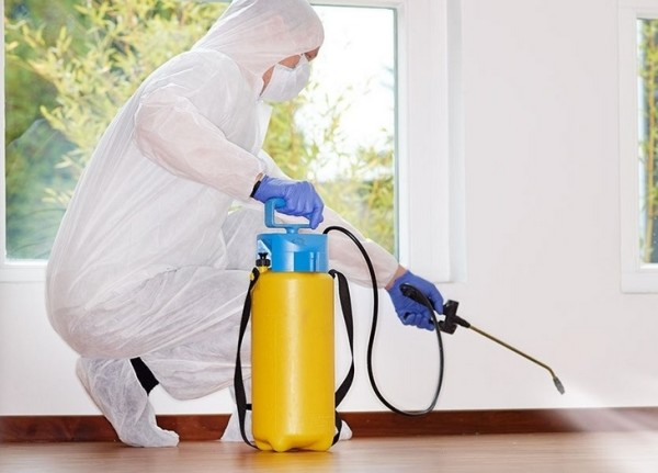 О проведении санитарно-эпидемиологических мероприятий в МАУ «МФЦ»
