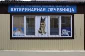 В Ростовской области пройдет очередной день льготной стерилизации животных-компаньонов