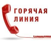 «Горячие линии» в Волгодонске: куда звонить по самым актуальным вопросам во время режима полной самоизоляции