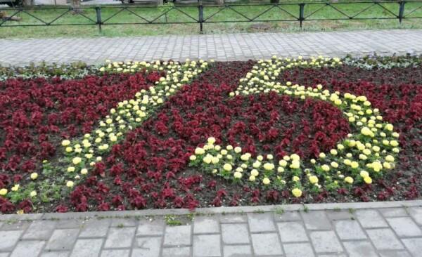 Департамент строительства и городского хозяйства: 1 июня в Волгодонске стартует городской конкурс «Радуга цветов»