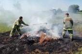 Совместно с полицией казаки-дружинники раскрыли 242 преступления