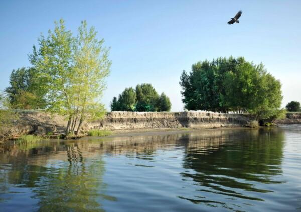 Ростовская АЭС: водоем-охладитель – экосистема повышенного внимания