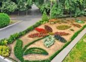 В Волгодонске стартовал городской конкурс «Радуга цветов»