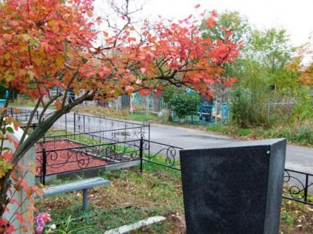 Депутаты рассмотрели вопрос о состоянии городских кладбищ