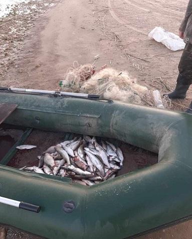 На Цимлянском водохранилище задержали браконьера-любителя