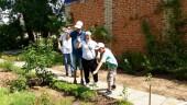 Лето — это маленькая жизнь: волгодонский центр «Радуга» организовал работу летней оздоровительной площадки «Особенное лето»