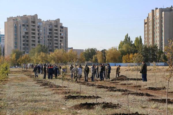 16 октября в Волгодонске пройдет осенний День древонасаждений