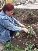 Порядок в доме: активисты ТОС «Виктория», «Раздолье» и «Победа» провели экологические субботники на своих территориях
