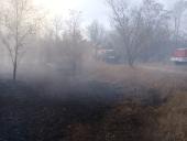 Полиция задержала угонщика автомобиля, из-за которого сгорело 330 га леса в Цимлянском районе