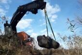 Скифскую каменную бабу нашли школьники в Ростовской области