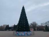 С 1 декабря в Волгодонске начнется установка новогодних елей