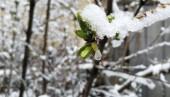 На Дону в выходные дни ожидается мокрый снег