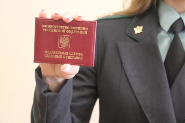 Как работать с банком данных исполнительных производств Управления Федеральной службы судебных приставов России по Ростовской области