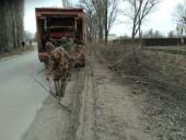 Более 50 аварийных деревьев во дворах и на улицах города убрали коммунальщики с начала года