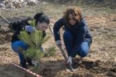 Ростовская область присоединится к акции «Сад Памяти»
