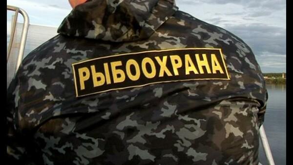 В Ростовской области браконьера осудили за нападение на инспектора рыбоохраны