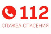 Оперативная обстановка: в январе в Волгодонске произошло 166 преступлений, 11 пожаров и три провала под лед