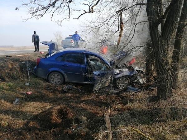 На трассе Ростов-Волгодонск иномарка вылетела в кювет и врезалась в дерево