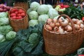 Сформирован перечень торговых мест для дачников, садоводов-огородников и владельцев личных подсобных хозяйств