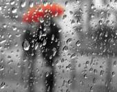 Проливные дожди надвигаются на Ростовскую область