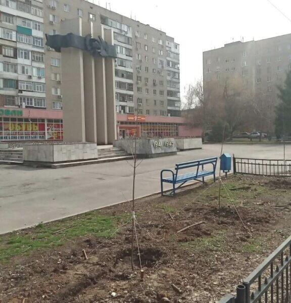 Волгодонцы присоединились к международной акции «Сад Памяти»