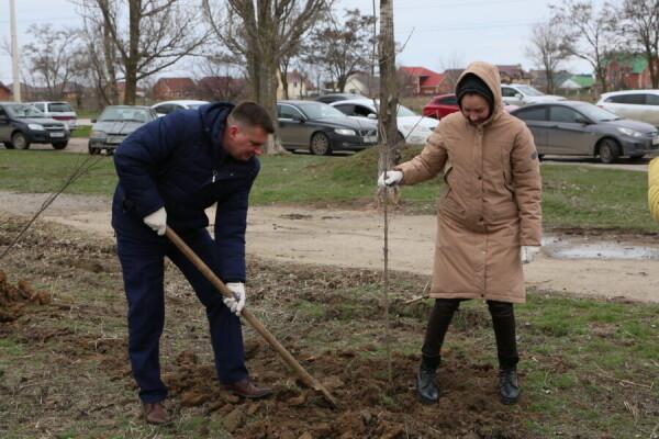 Регоператор «ЭкоЦентр» помогает в озеленении Волгодонска