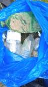 На экологическом субботнике в Волгодонске убрали городскую территорию от случайного мусора