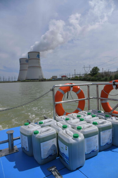 Ростовская АЭС впервые провела экологическую реабилитацию реки Дон от размножения сине-зелёных водорослей