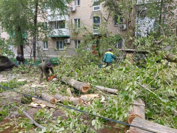 Волгодонские коммунальщики продолжают убирать упавшие деревья и восстанавливать электроснабжение в домах