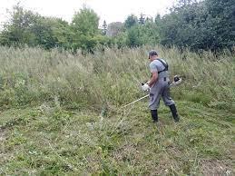 Виктор Мельников: к подрядчику, отвечающему за покос травы в новом городе, предъявлены претензии