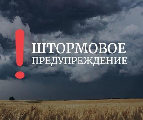 В Ростовской области МЧС объявило экстренное предупреждение о штормовом ветре и ливнях