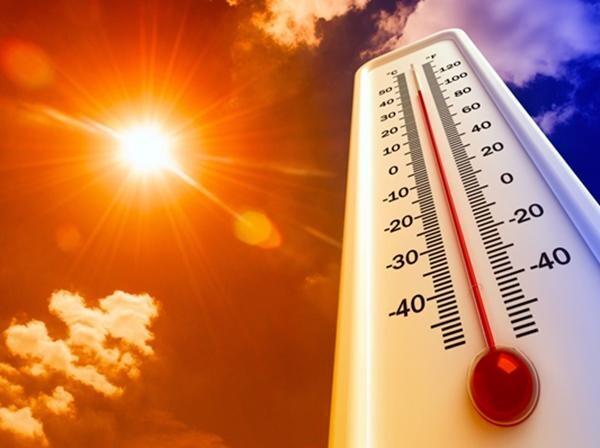 Ростовский гидрометцентр: в ближайшие три дня на Дону ожидается 40-градусная жара