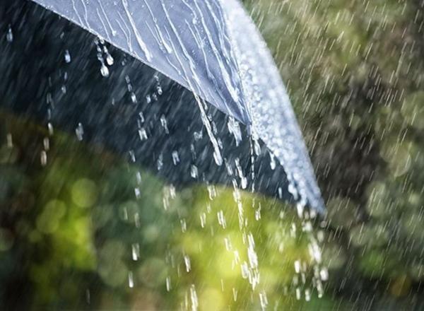 Сильные дожди будут лить в Ростовской области все выходные