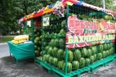 В Волгодонске подготовлено более 120 торговых точек для продажи бахчевых культур