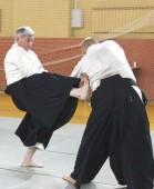 Волгодонские тренеры по айкидо приняли участие в обучающем семинаре в Подмосковье