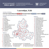 Число подтверждённых инфицированных коронавирусом увеличилось в Ростовской области на 479