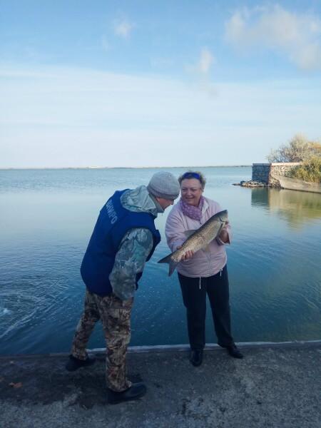 В акваторию водоема-охладителя Ростовской АЭС выпущено 7 тонн рыбы